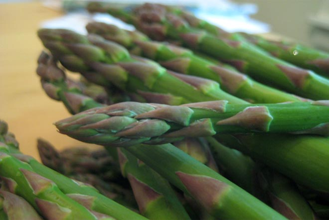 ASPARAGUS - GET EXCITED