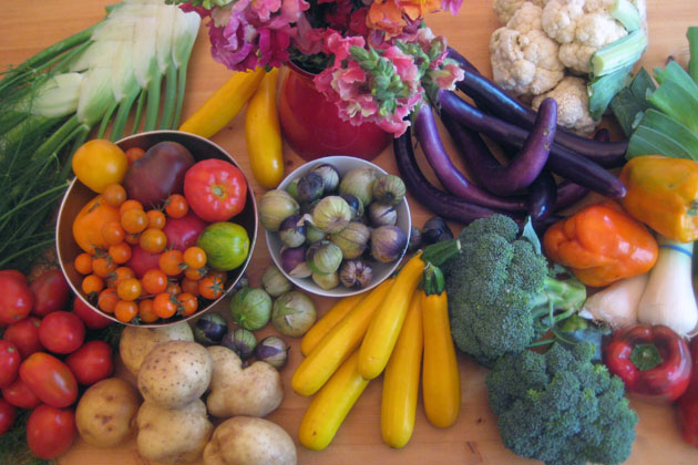 Potatoes, Fennel, Tomatoes, Flowers, Eggplant, Cauliflower, Bell Peppers, Broccoli, Squash, Tomatillos