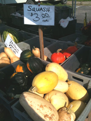 Winter Squash - maybe it should be called fall squash, or late summer squash
