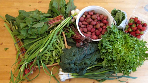 Peas, Potatoes, Garlic, Beets, Chard, Frisee, Leeks, Strawberries, Spinach, Basil, Rhubarb, oh my!