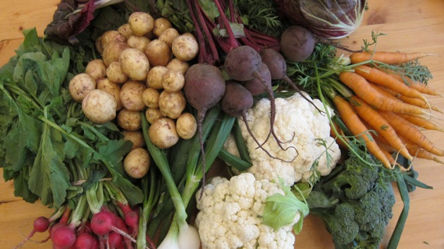 a spread of Carrots, Potatoes, Beets, Cauliflower, Radishes, Broccoli