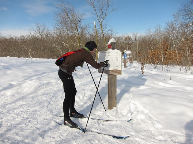 a cross country skier examining a trail map