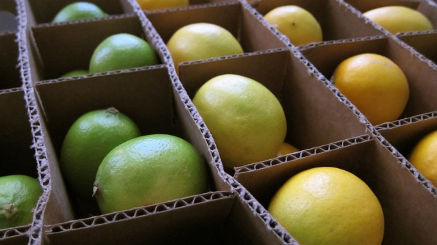 boxed limes and lemons