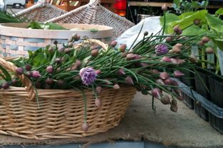 herb bouquets from Pig's Eye Urban Farm in a woven basket