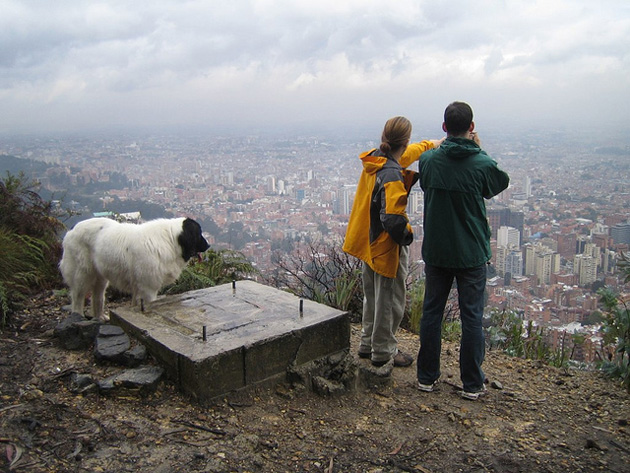 a white dog and two men in rain coats overlooking Bogotá