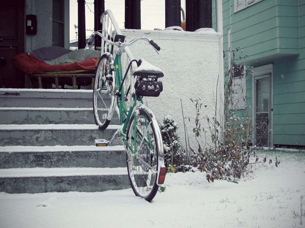 pictures from a morning walk during Minneapolis' first (real) snow, 2012