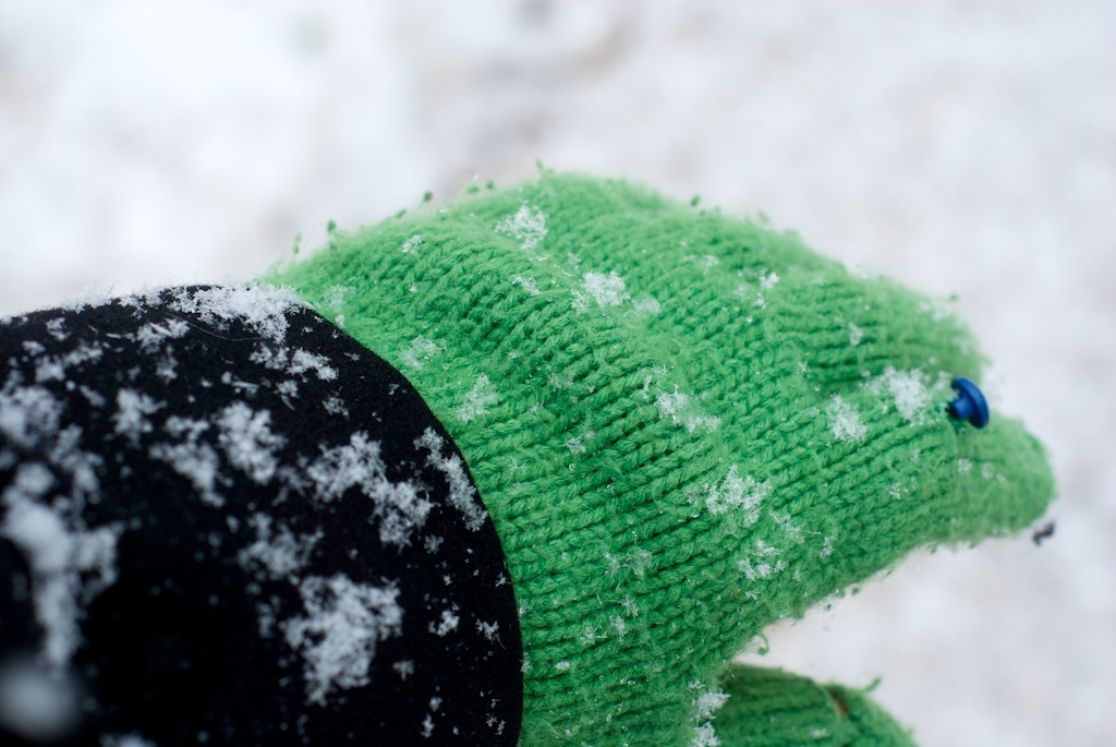 Fresh snow on my glove