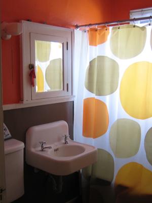 $8 IKEA shower curtain