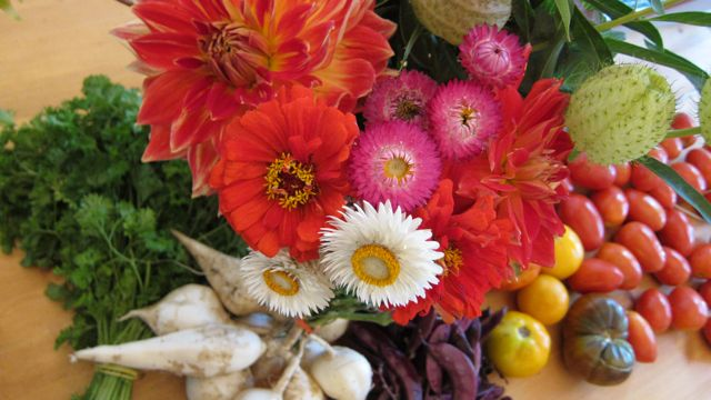 bright fall flowers and market vegetables