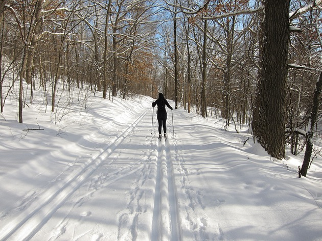 a cross country skier from behind