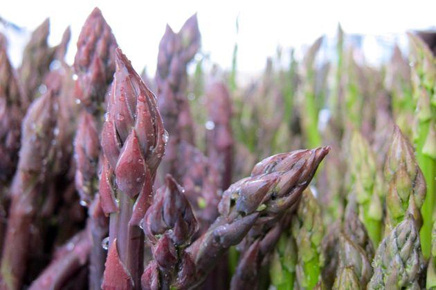 Purple Asparagus Tips