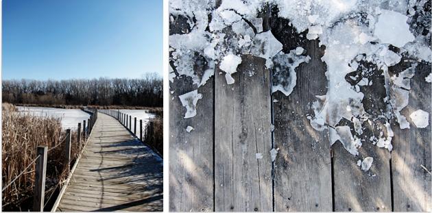 winter walk details, ice