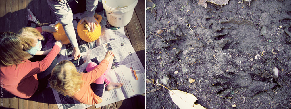 pumpkin carving (left) and animal tracks in the soil in the woods (right)